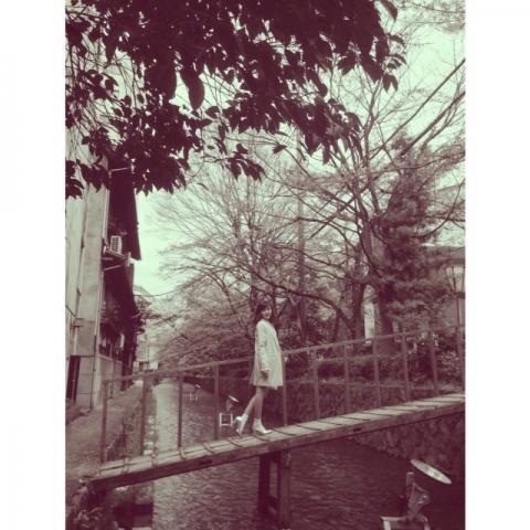 清水五条 桜
